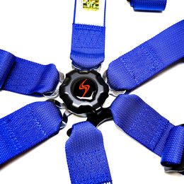 6-Point Harness FIA DS Blue
