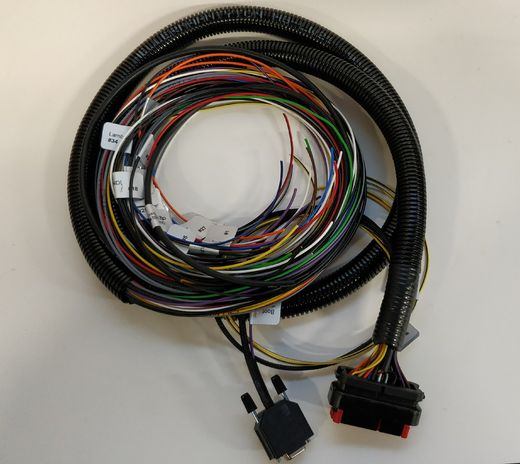 Protoparts 250cm Flying leads harness for Microsquirt