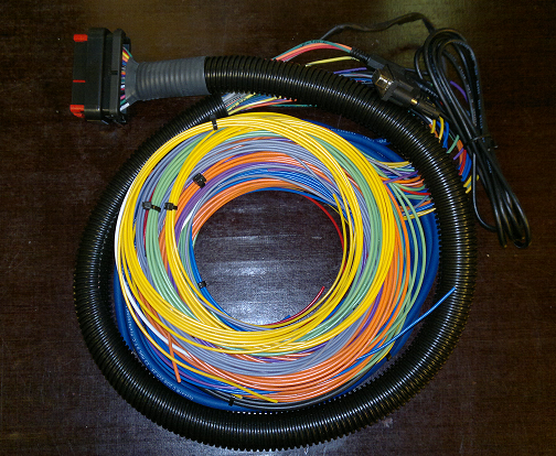 B&G MicroSquirt flying leads wiring harness